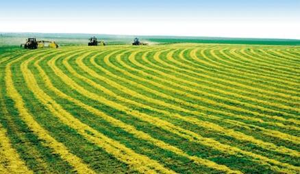 加快农业科技进步的必要性
