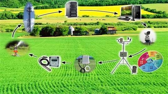 人工智能农业转型和发展